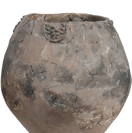 Neolithic jars 8,000-years-old revealed evidence of wine-making